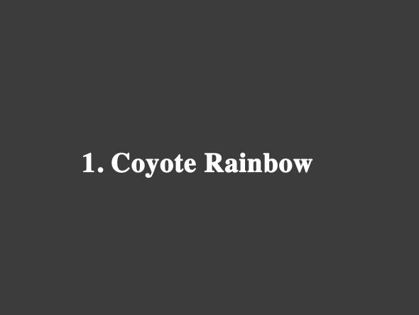 Coyote Rainbow